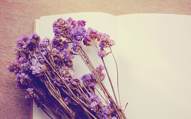 Blank notebook and dried statice flowers with retro filter effec